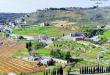 بلدة بتاتر- الشوف